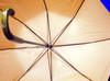 Ist2_63497_inside_an_umbrella